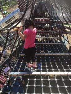 Marine Cove Playground