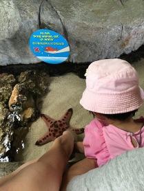 Touching the starfish