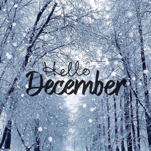 dc0750de8b47988572695e49ce02c996--welcome-december-welcome-winter.jpg